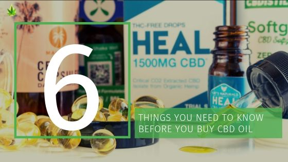 6 THINGS YOU NEED TO KNOW ABOUT CBD